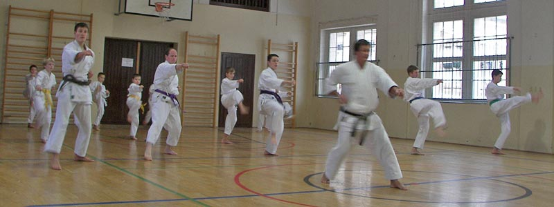 Sebnitzer Karateverein Kaku Dojo e.V.